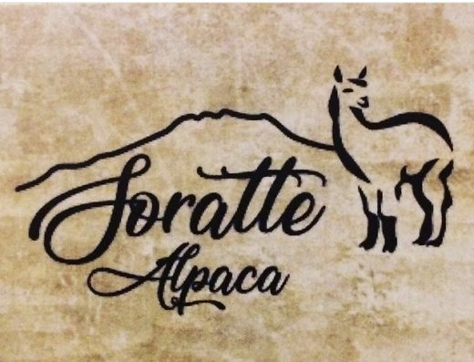 Soratte Alpaca Home restaurant 1